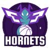 Hornets de Charlotte (NBA)