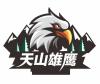 Xinjiang Tianshan Eagle