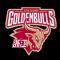 Zhejiang Golden Bulls