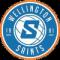 Wellington Saints