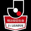 Japanese J1 League
