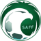 Saudi Arabia Division 1