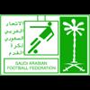 Saudi Arabia Youth Cup