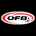 Austrian Landesliga