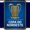 Brazilian Youth Championship