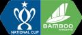 Vietnam National Cup
