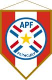 Paraguayan Cup