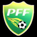 Brazilian Amazonas Division 1