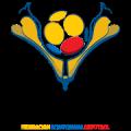 Ecuadorian Campeonato Serie B
