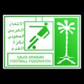 Saudi Arabia Division 2