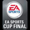 Dublin Super Cup