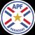 Paraguay reserve team league