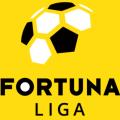 Slovak Super Liga