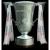 Irish league cup winner