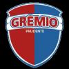 Gremio Prudente