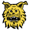Tampereen Ilves 2