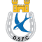 Dungannon Swifts Reserves