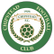 Chipstead FC