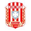 CWKS Resovia Rzeszow