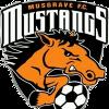 Musgrave Mustangs B