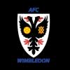 AFC Wimbledon XI