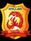 Wuhan Zall Football Club Of White Team