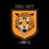 Hull City Women