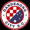 Dandenong City U21