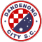 Dandenong City U20