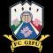 FC Gifu